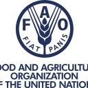 Da Papa Benedetto a Papa Francesco i richiami «profetici» degli interventi alla FAO